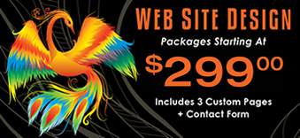 Web Design Packages Starting at 299